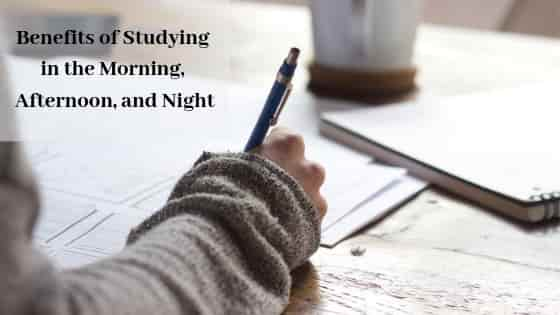 Benefits of Studying in the Morning, Afternoon, and Night header